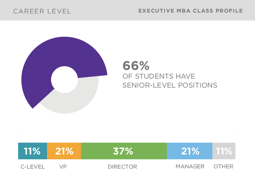 kellogg executive mba class profile by career level