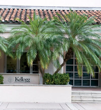 The Kellogg Miami Campus